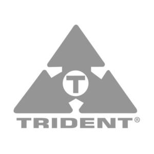 pmi_audio_trident_logo